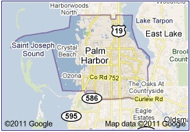 Palm Harbor Junk Removal Service